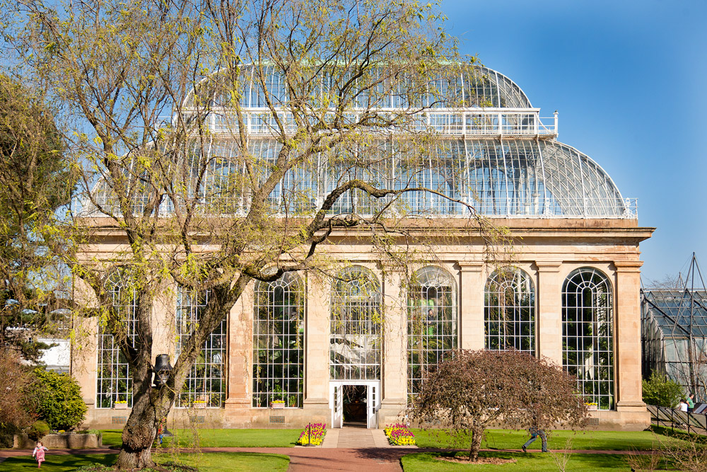 Royal Botanical Gardens Edinburgh Glasshouse