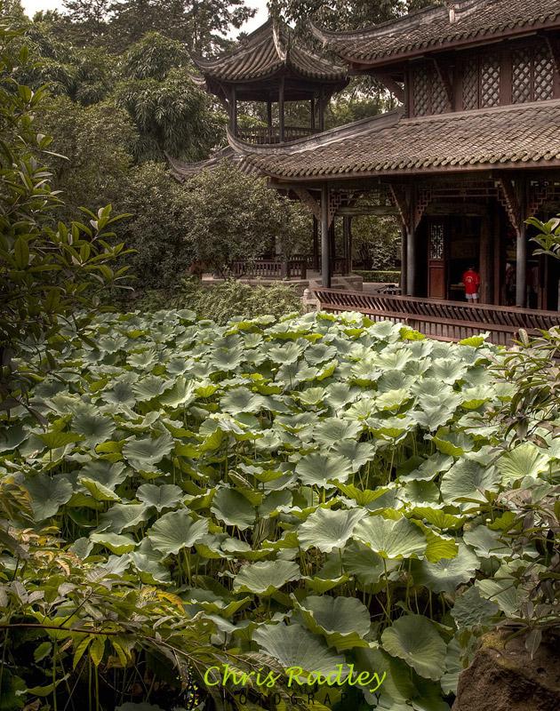 Wuhou Ci Chengdu China