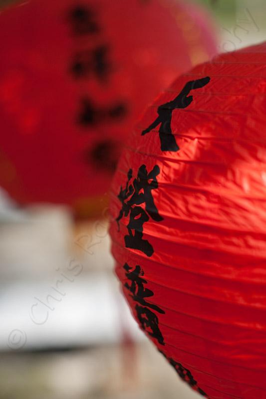 Chinese Lantern Kenting