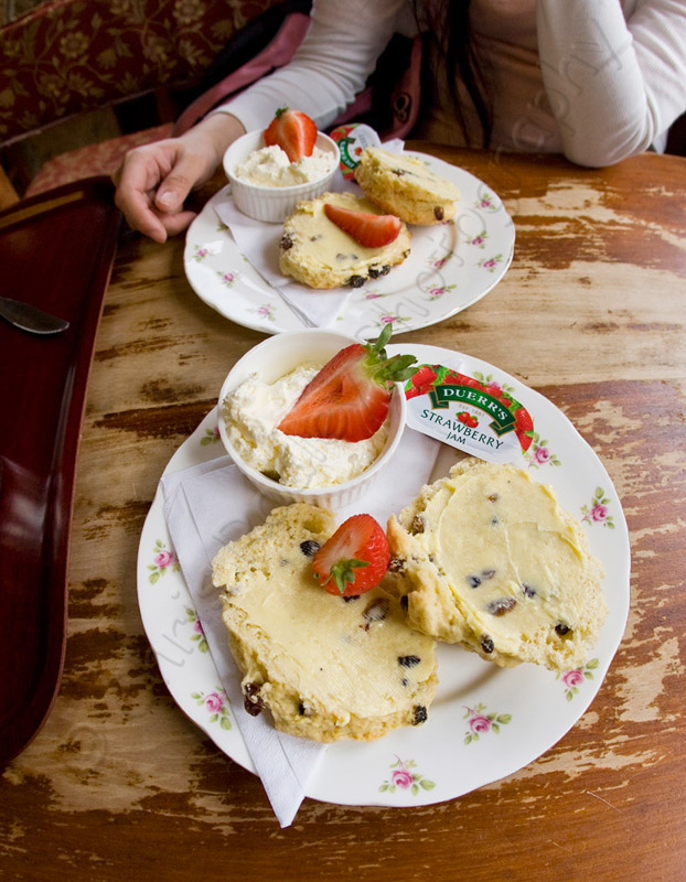 Cream Tea and Scones