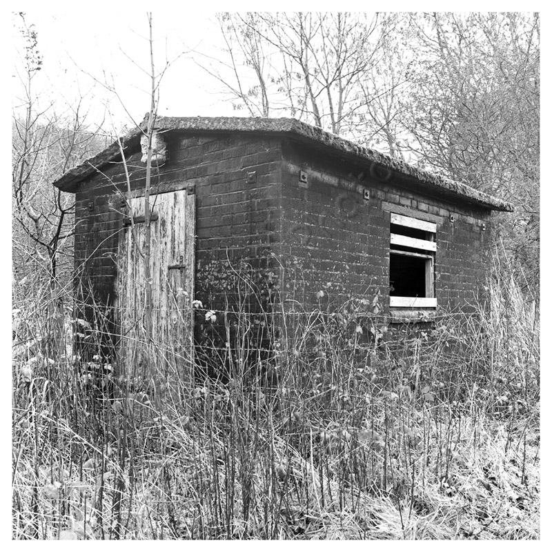 Wharram Percy shed